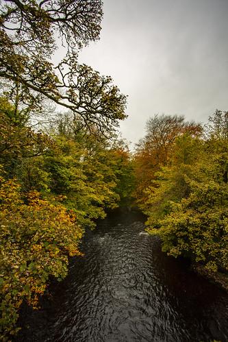River Boyle Ireland 9 October 2018