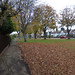 Howard Road, Kings Heath - autumn leaves and trees