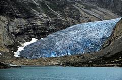 Norwegen 1998 (211) Nigardsbreen