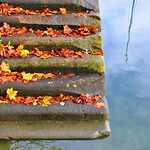 Autumn steps at Preston Docks