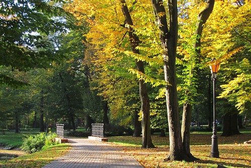 Autumn in the park :)