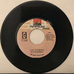 WAYNE WONDER:HEAL THE WORLD(RECORD SIDE-A)