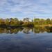 Pond - Myton Fields (50)