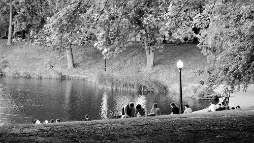 A Moment in the Park II