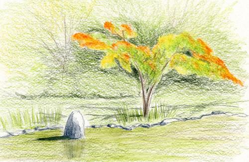 10-2-18 Seattle Japanese Garden