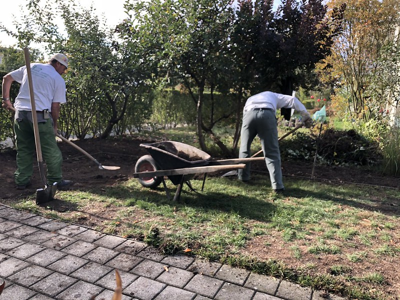 Removing the lawn