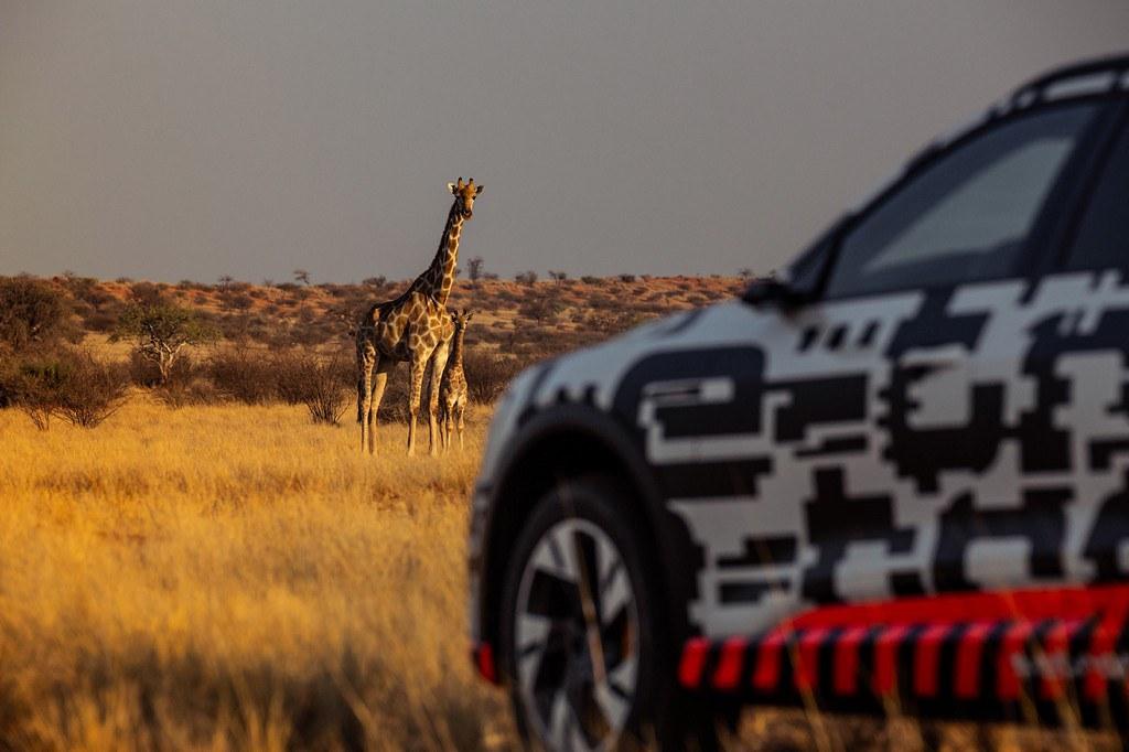 Audi e-tron Namibija4
