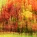 ROG_3230b Acer