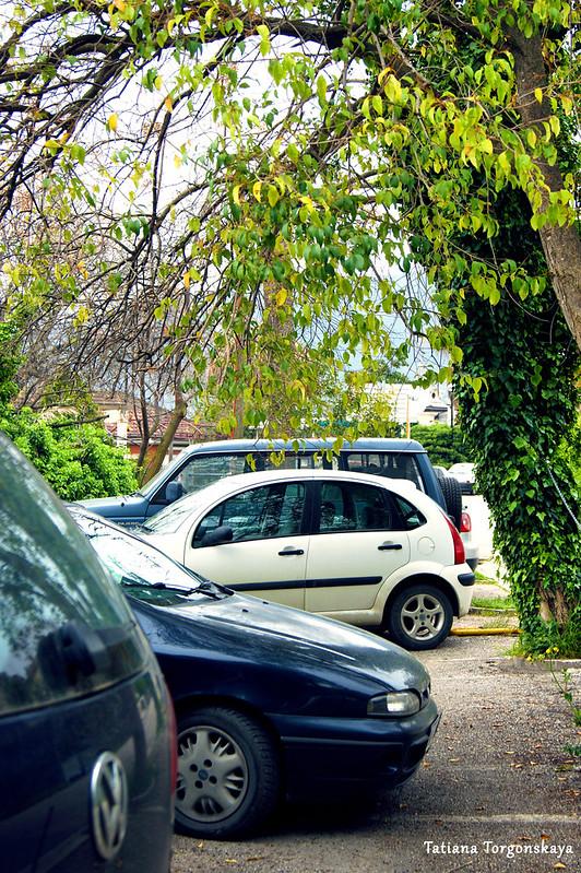 Машины на городской парковке на улице Ковачевича в Херцег Нови