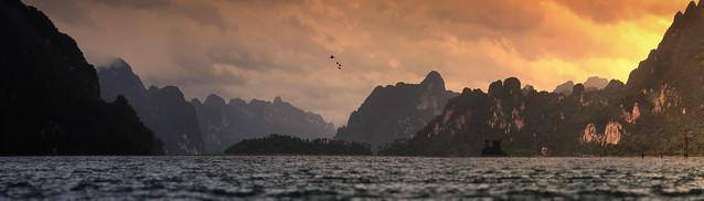 The great Hornbills flying over National Park Khao Sok