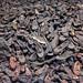 Auschwitz by pericoterrades