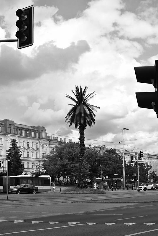 Warsaw_2018_283