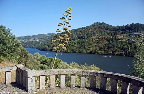 Miradouro de Mosteirô - Portugal 🇵🇹