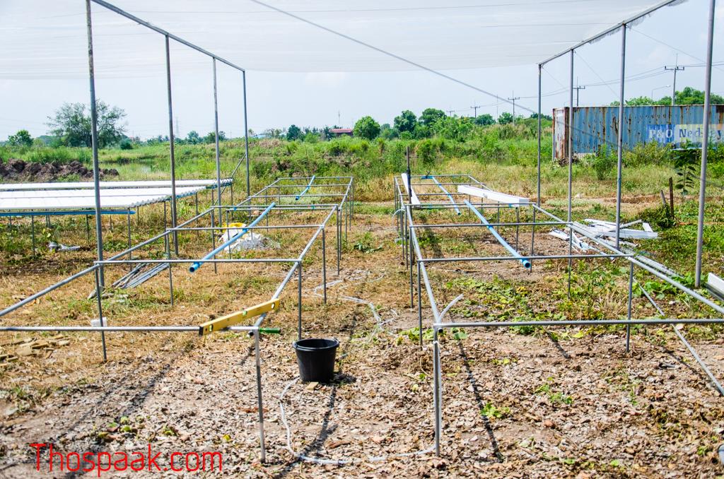 เครื่องมือสำหรับสร้างฟาร์มไฮโดรโปนิกส์ เตรียมความพร้อมสู่การทำสมาร์ทฟาร์ม