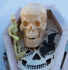 Tell us a Halloween story Great Skull