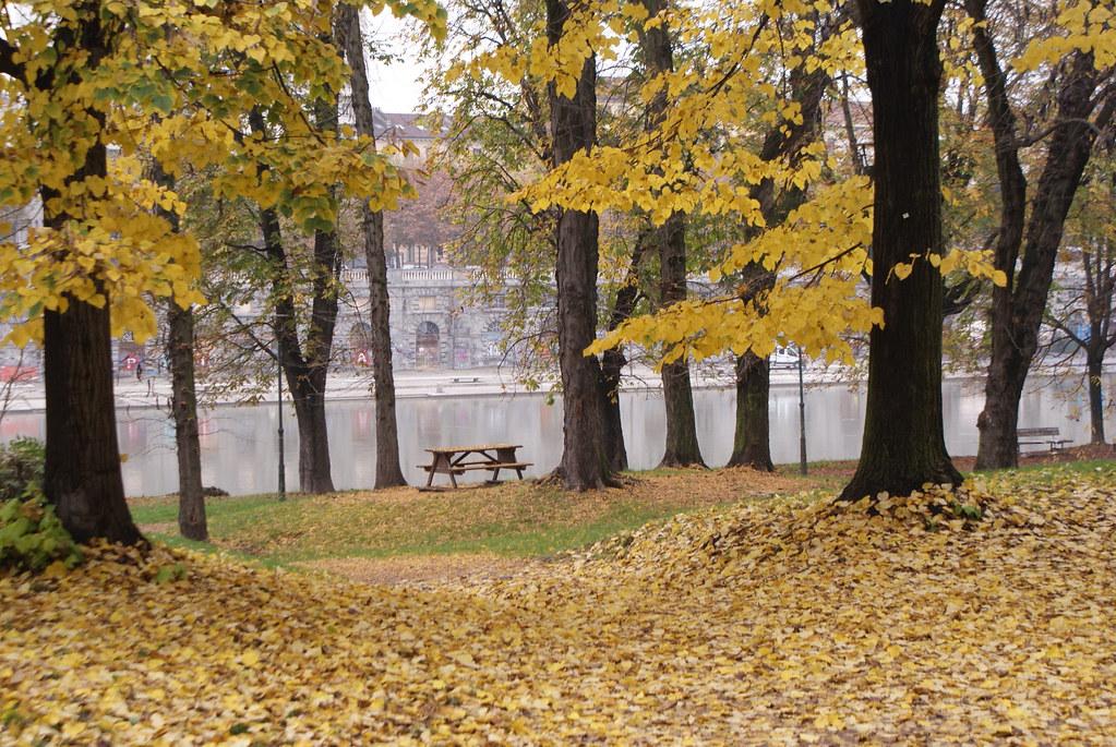 Parc dans le quartier de Borgo Po à Turin.