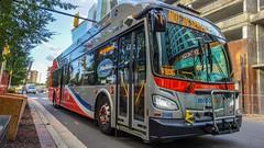 WMATA Metrobus 2018 New Flyer Xcelsior XN40 #3146