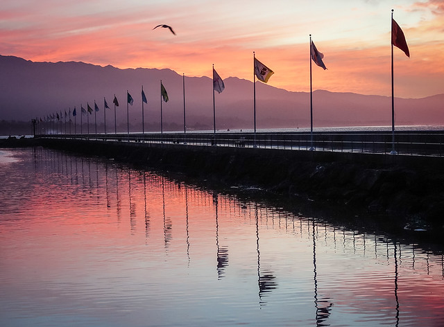 Harbor Flags at Dawn