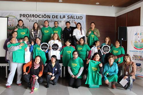 Segunda Escuela de Gestores Sociales en Promoción de la Salud, Máfil