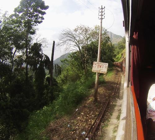 srilankalta (8)