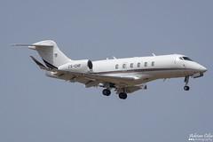 NetJets --- Bombardier BD-100 Challenger 350 --- CS-CHF