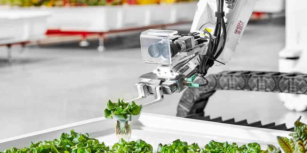 nouvelle-ferme-automatisée-robots