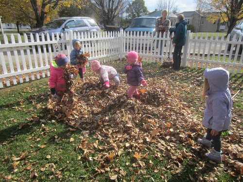 armfuls of leaves