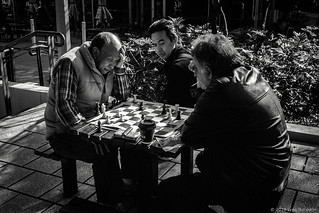 chess players, Hyde Park, Sydney, spring 2018  #024