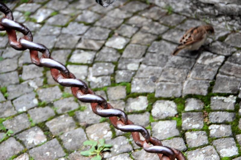 Chain 03.10 (2)