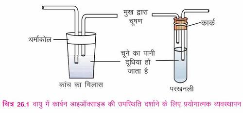 वायु में कार्बन डाइऑक्साइड की उपस्थिति दर्शाने के लिये प्रयोगात्मक व्यवस्थापन