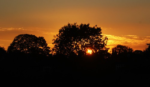 Wollaton sunset