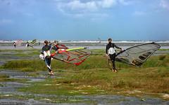 Schiermonnikoog: windsurfers on the beach