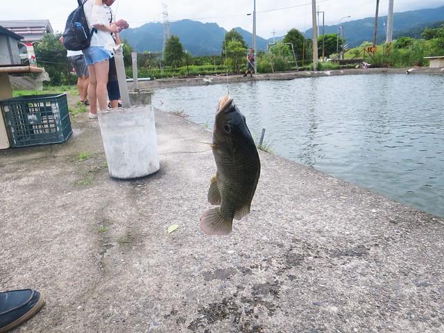漁樂釣魚碳烤休閒餐廳18