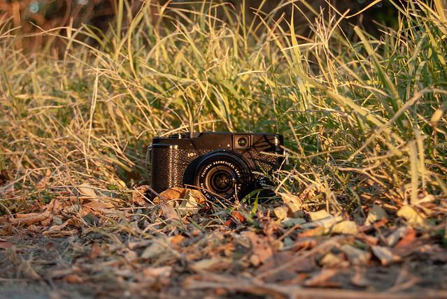 DSC_3671, Nikon D60, AF-S DX Zoom-Nikkor 18-55mm f/3.5-5.6G ED II