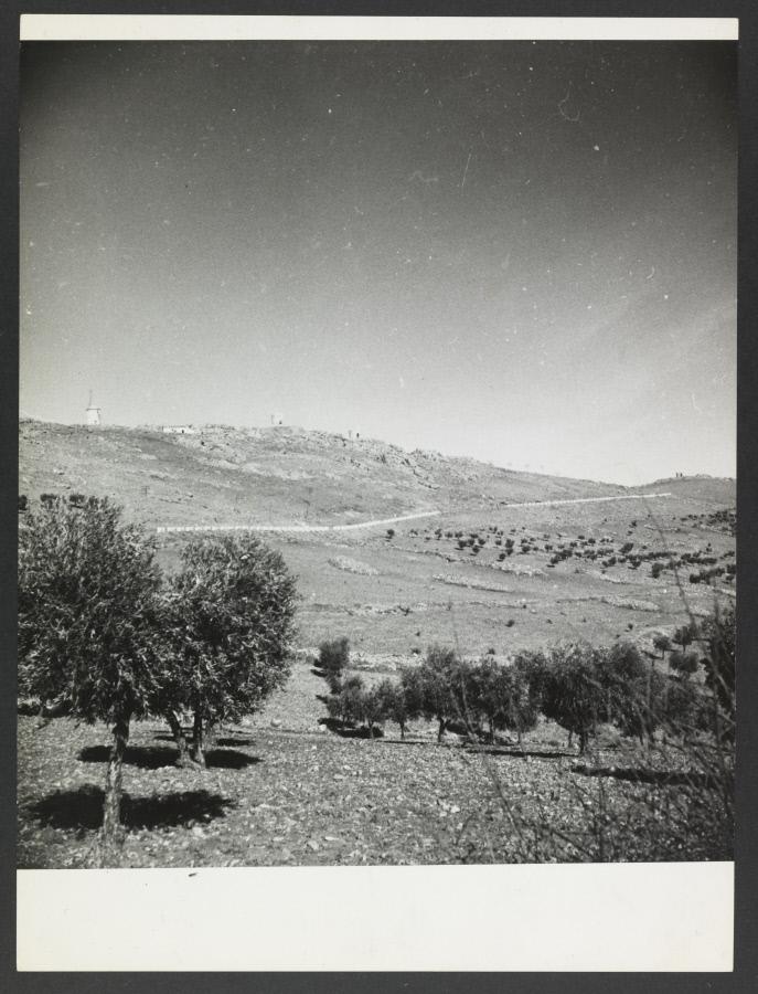 Paisaje de los alrededores de Toledo. Fotografía de Yvonne Chevalier en 1949 © Roger Viollet
