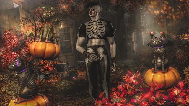 Sphynxie Halloween