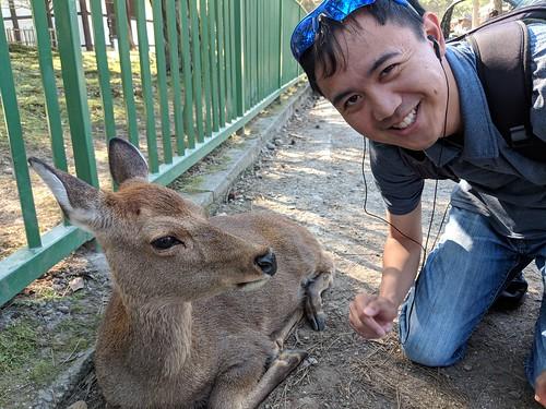 Japan Trip 2018 1379