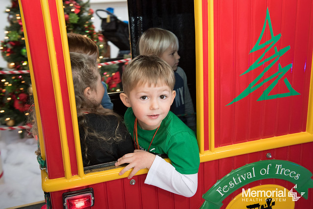 2018 Festival of Trees School Days