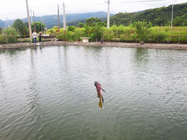 漁樂釣魚碳烤休閒餐廳16