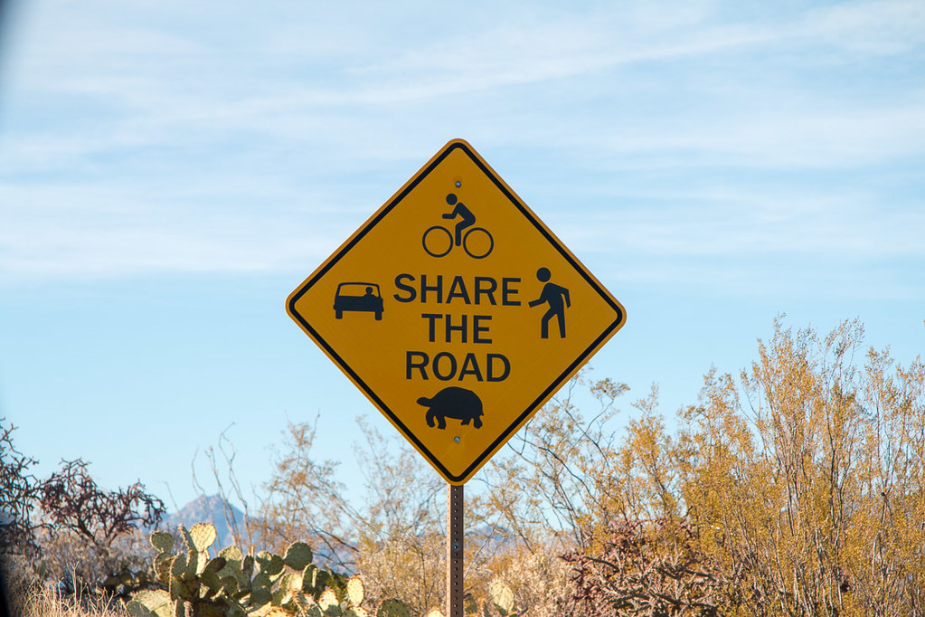 Share the road with turtles sign