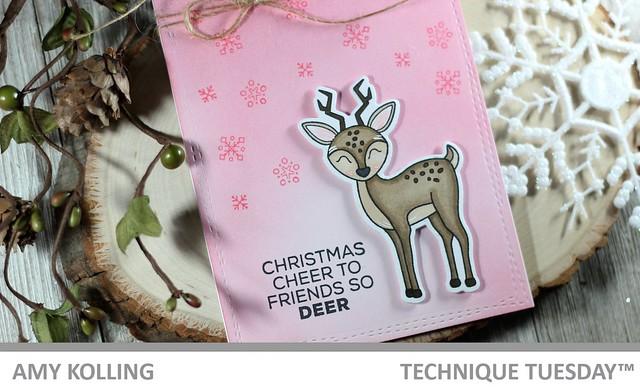 Dani Deer2