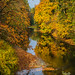Autumn at Cowichan station by cdnfish