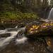 Majestic Falls by John Behrends