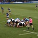 015-20181104_Cardiff Arms Park-Cardiff Blues vs Zebre Rugby Match-2nd half action-scrum in Zebre half of pitch-photo 3 of 3