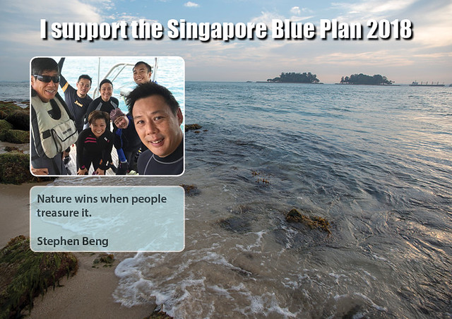 I support the Singapore Blue Plan 2018