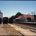 ChrisBearADL posted a photo:5.2.1986 Burra - South Australia loco AN 930 + cattle wagons + station building (p0105030_t)