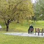 Winckley Square Autumn