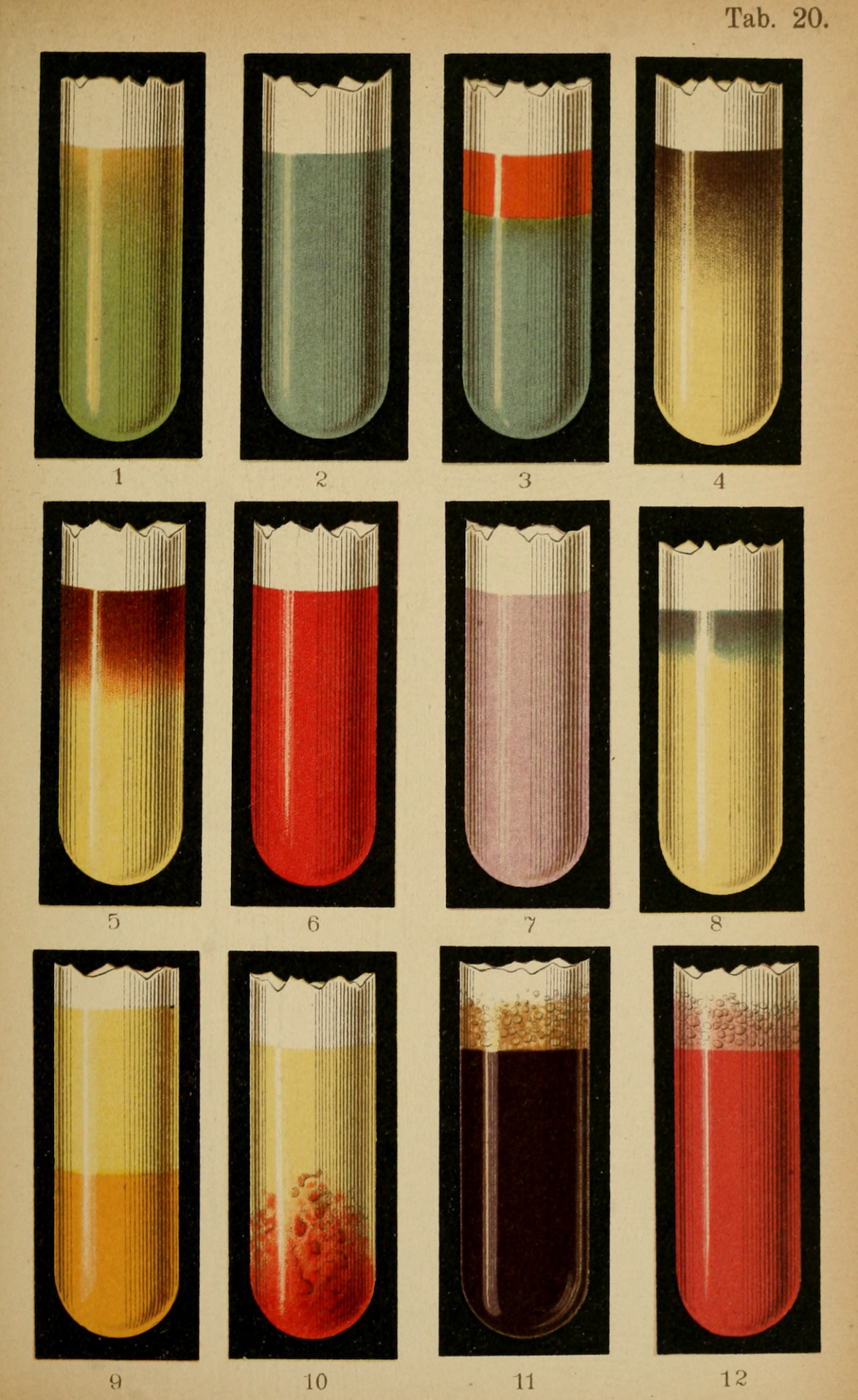 """Plate 20. """"The most important color-reactions of the urine."""" """" Atlas of methods of clinical investigation. 1898."""