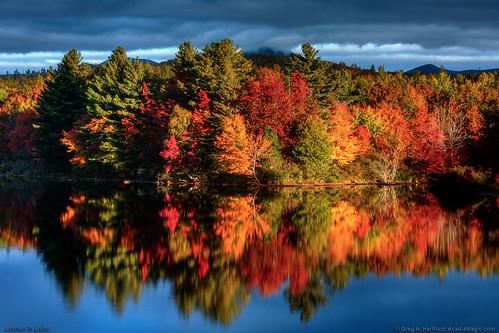 Maine Autumn Foliage Colors