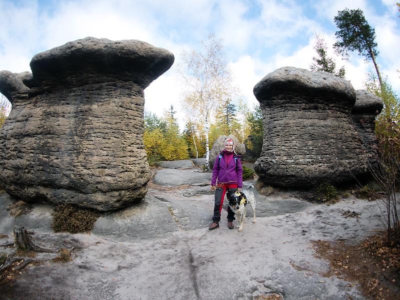 Góry Stołowe Broumovské stěny pies